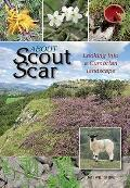About Scout Scar: Looking Into a Cumbrian Landscape