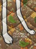 Feliciano Centurion