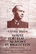 What You Have Almost Forgotten Selected Poems of Gyula IllyacS
