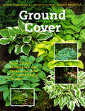 Ground Cover How To Use Flowering & Foli