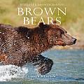 Brown Bears Wildlife Monographs