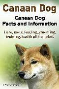 Canaan Dog. Canaan Dog Facts and Information. Canaan Dog Care, Costs, Feeding, Grooming, Training, Health All Included.