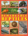 Extraordinary Reptiles: Discover the World's Extreme Reptiles, from the Thorny Devil with Two Heads to the Rather Aptly Named Stinkpot Turtle