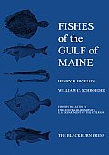 Fishes of the Gulf of Maine: Fishery Bulletin 74