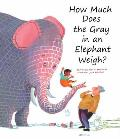 How Much Does the Gray in an Elephant Weigh?
