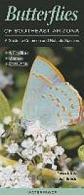 Butterflies of Southeast Arizona: A Guide to Common & Notable Species