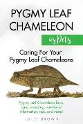 Pygmy Leaf Chameleons as Pets: Pygmy Leaf facts, care, breeding, nutritional information, tips, and more! Caring For Your Pygmy Leaf Chameleons