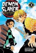 Demon Slayer Kimetsu no Yaiba Volume 3