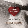 Where the Lost Dogs Go: A Story of Love, Search, and the Power of Reunion