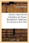 Histoire Naturelle Des Col?opt?res de France. Brevipennes, P?d?riens, Evesth?tiens
