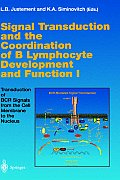 Signal Transduction and the Coordination of B Lymphocyte Development and Function I: Transduction of Bcr Signals from the Cell Membrane to the Nucleus