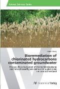 Bioremediation of Chlorinated Hydrocarbons Contaminated Groundwater