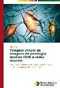 Triagem Virtual de Imagens de Patologia Usando Cbir E Redes Neurais