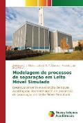 Modelagem de Processos de Separacao Em Leito Movel Simulado
