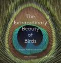 Extraordinary Beauty of Birds Designs Patterns & Details