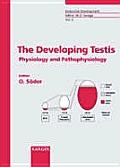 The Developing Testis