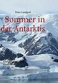 Sommer in der Antarktis