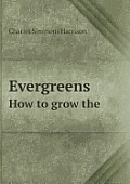 Evergreens How to Grow the