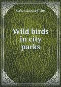 Wild Birds in City Parks
