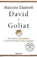 David Y Goliat / David and Goliath