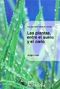 Las Plantas, Entre El Suelo y El Cielo